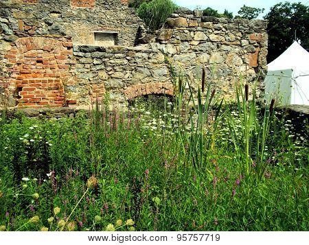 Ruins garden