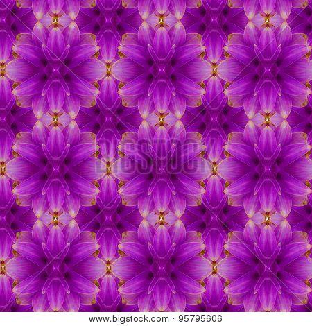 Siam tulip seamless pattern  background
