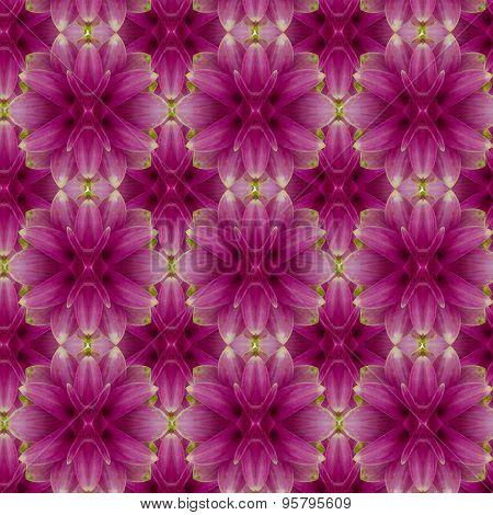Siam tulip seamless pattern  background.