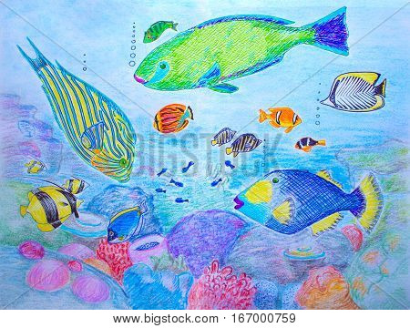 Hand-drawn illustration Coral fishes. Colorful pen drawing on white paper. Coral fish and plants horizontal image. Child style drawing with vibrant underwater world. Creative view on sea life picture