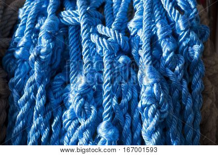 Blue colored ropes on market for sale