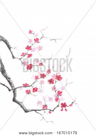 Japanese style sumi-e pink plum blossom ink painting. Great for greeting cards or texture design.