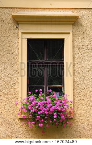 A nice renaissance window with pink flowers