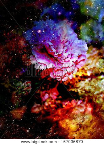 abstract multicolor flower motive collage in space. Carnation flower