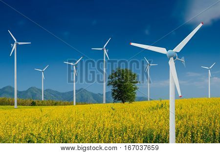 Wind Turbine for alternative energy in Yellow flowers field of Crotalaria with power poles. Eco power concept