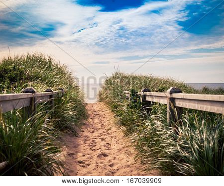 Trail on the sand dune in prince edward island