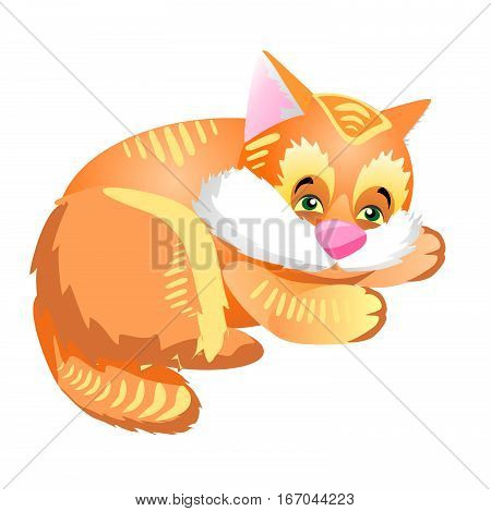 Funny and cute red fluffy kitten resting. Illustration with pet lying on a white background.