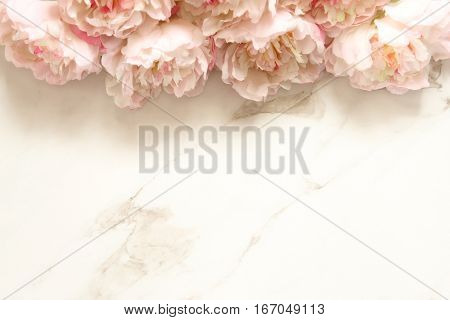 Minimalist floral background with peonies  and white marble open space
