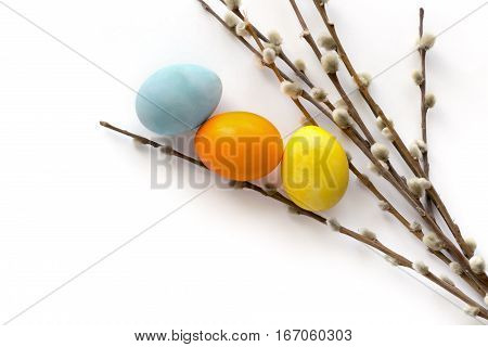 Isolated painted eggs and willow twigs. Easter background with copy space