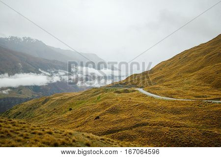 Road over the rolling hills towards Arrowtown on the South Island of New Zealand