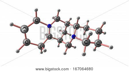Sparteine is a class 1a antiarrhythmic agent a sodium channel blocker. It is an alkaloid and can be extracted from scotch broom. 3d illustration