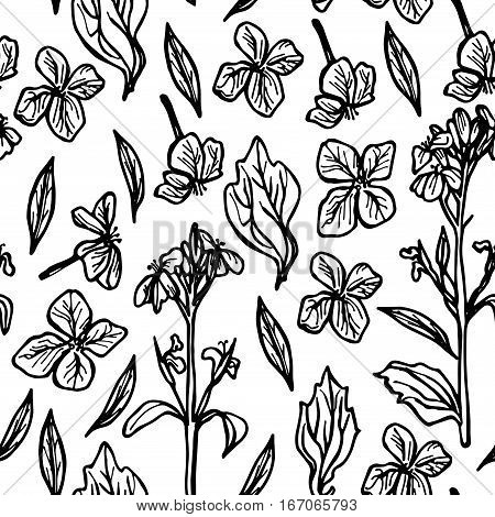 seamless pattern leaves and flowers sketch black on white background. Vector illustration