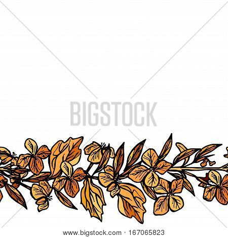 autumn leaves and flowers sketch orange and black on white background. Vector illustration