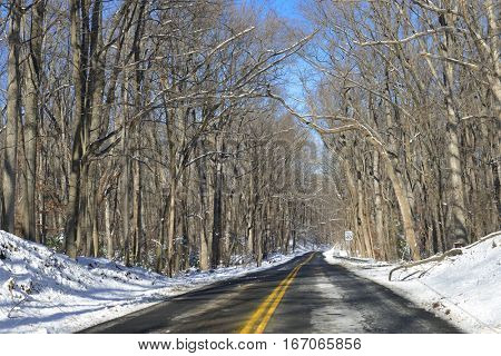 Road into the forest in winter - Shenandoah National Park, Virginia