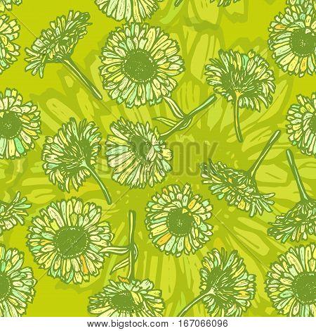 summer calendula flowers sketch dark green outline on green background. Vector illustration