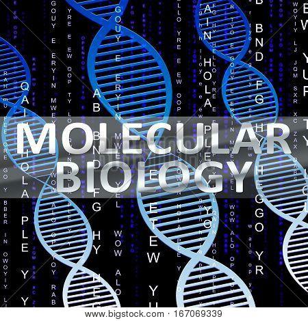 Molecular Biology Shows Dna Research 3D Illustration