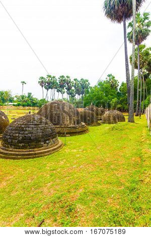 Jaffna Kandarodai Dagobas Stupas Grass Field V