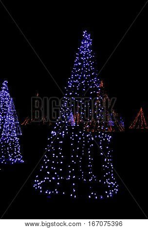 Vertical of whimsical artistic Christmas trees made up of strings of blue and red lights glowing brightly in a small park late at night in Niagara Falls, Ontario, on a dark late November evening. High exposure on lightbulbs at 100%; suitable for web or pr