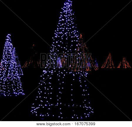 Square view of whimsical artistic Christmas trees made up of strings of blue and red lights glowing brightly in a small park late at night in Niagara Falls, Ontario, on a dark late November evening. High exposure on light bulbs at 100%; suitable for web o
