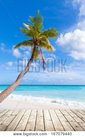 Empty Wooden Pier On Caribbean Beach