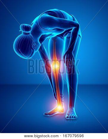 3d illustration of women feeling Pain in leg