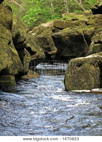 River Wharfe - The Strid