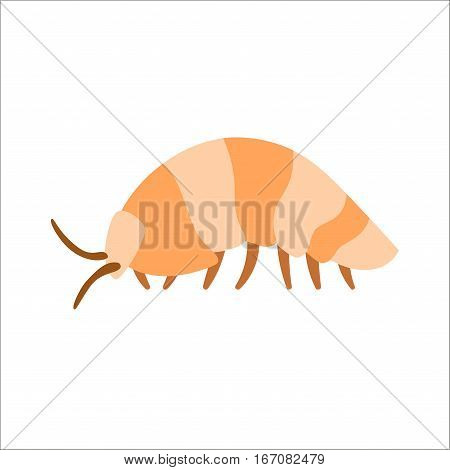 Centipede insect animal cartoon character isolated on white background. Danger macro bug poisonous predator body. Vector earthworm illustration design crawl invertebrate.
