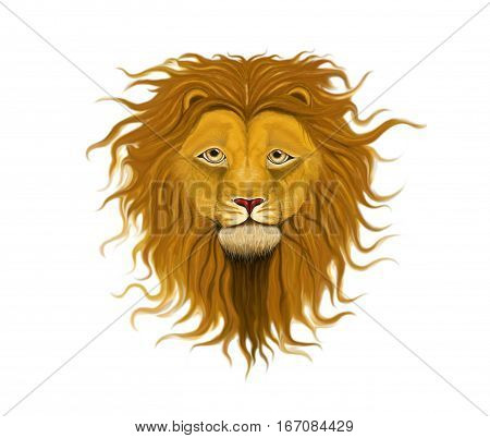 Lion head with a fluffy mane of curls and waves reaching