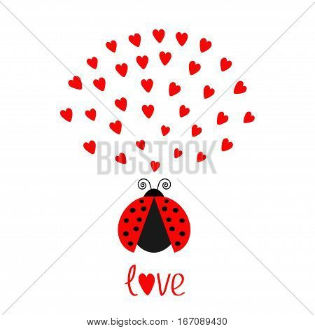 Red flying lady bug insect with hearts. Cute cartoon character. Happy Valentines Day. Word Love Greeting card. White background. Flat design. Vector illustration