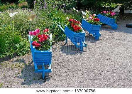 Blue handmade carts decorated with dahlias in the garden