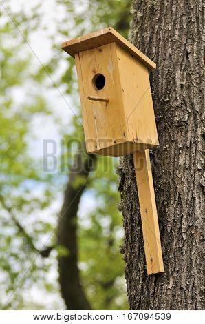 Nesting box birdhouse for birds on the tree