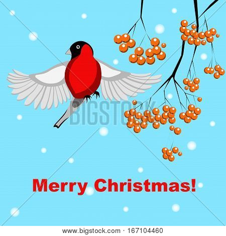 Vector illustration with a bird and rowand branches. Christmass card