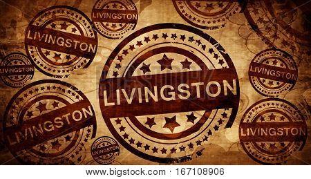 Livingston, vintage stamp on paper background
