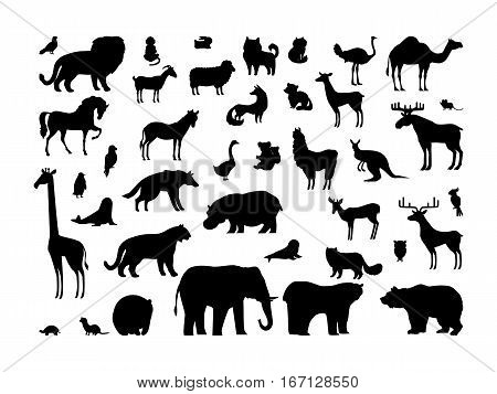 Animals silhouettes set. Deer, bear, wolf, tiger, fox, panda, raccoon, rabbit, owl, mouse eagle weasel roe deer chipmunk elephant giraffe isolated on white background Wildlife collection