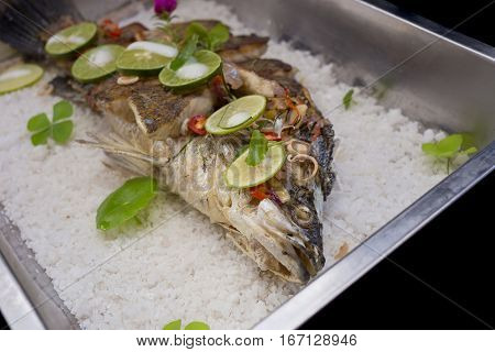 barbeque white snapper fish seafood on black background