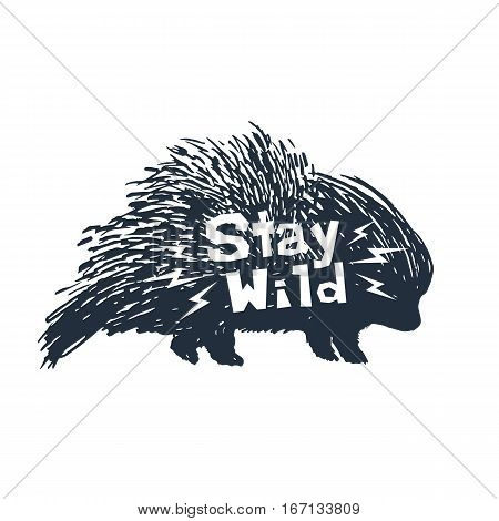Hand drawn icon with textured porcupine vector illustration and