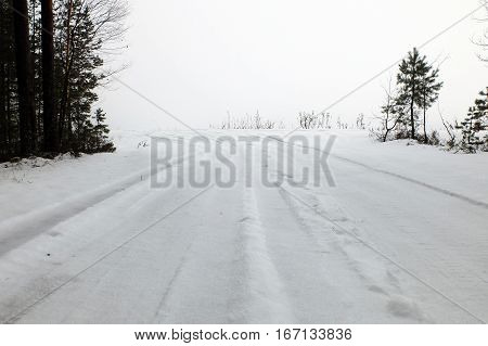 Winter fog forest road. Pure snowy path with traces of the car. Tender silence of the cold areas. Hazy idyll of infinity and beauty.