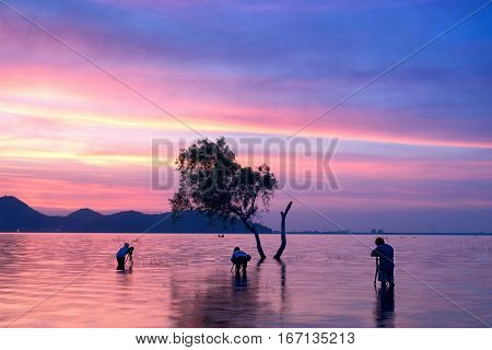 photographer taken alone tree in the lake long exposure picture
