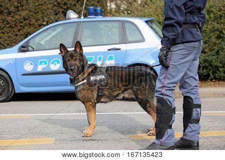 Vicenza, Vi, Italy - January 28, 2017: German Shepherd Police Do