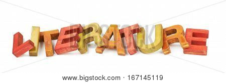 Word Literature made of colored with paint wooden letters, composition isolated over the white background