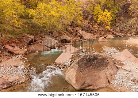 a scenic landscape of the Virgin River in fall in Zion National Park Utah