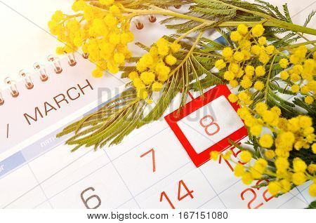 8 March card - mimosa flowers over the calendar with framed 8 March date. 8 March festive postcard