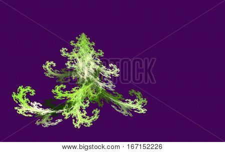 fractal Christmas tree on a black background