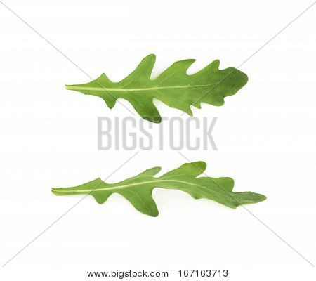 Single green rucola rocket salad leaf isolated over the white background, set of two different foreshortenings