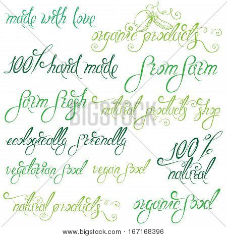 Collection of delicious vegetables signs elements labels hand drawn calligraphic phrases: 100% natural eco all organic natural products vegetarian food hand made etc. Set of lettering design.