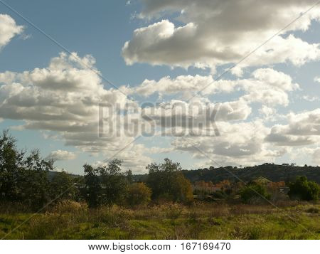 A natural open space is canopied by cumulus clouds