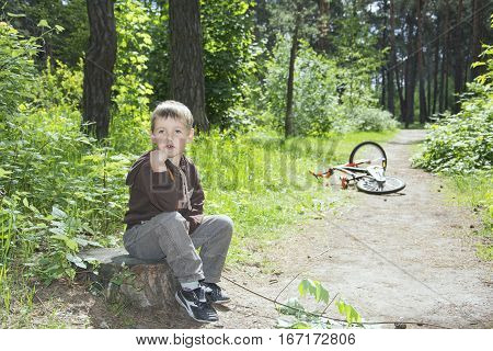 Spring in a pine forest a little boy sitting on a stump and close beside it is a bicycle.