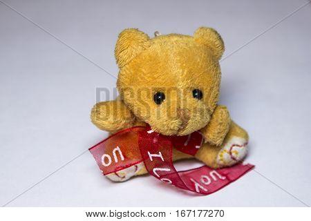 Teddy Bear Holding