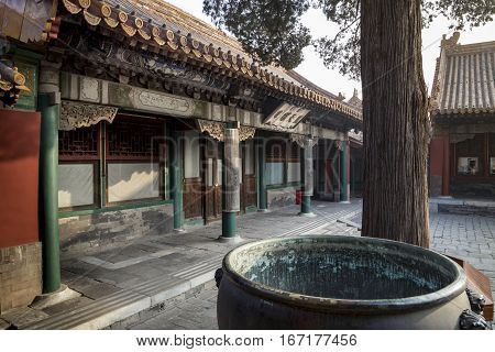 Courtyard of the Palace of gathered Elegance, Forbidden City, Beijing