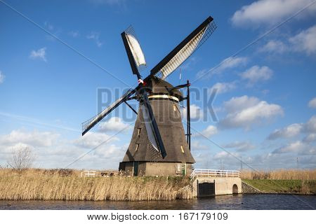 Thickets of a cane on the background of the Dutch wind mill.Traditional dutch windmill near the canal. Netherlands. Old windmill stands on the banks of the canal, and water pumps.